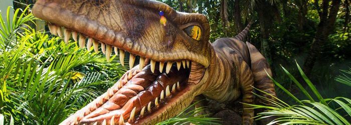 Raptor Encounter Now Open at Universal's Islands of Adventure