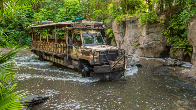 New Details On Nighttime Kilimanjaro Safaris!