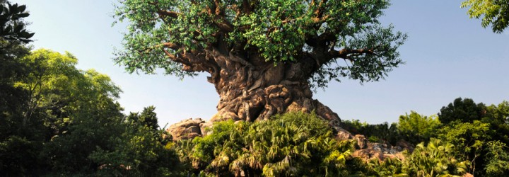 Poor (Google) Reviews of Disney's Animal Kingdom – Part 1