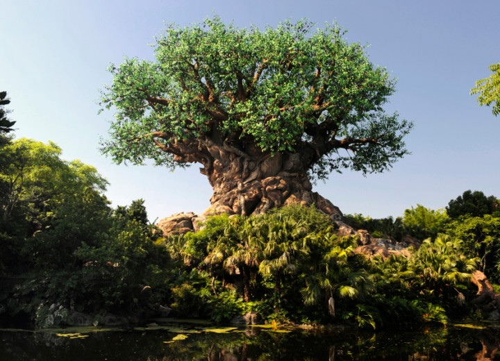 The Ultimate Disney's Animal Kingdom Attractions Tournament