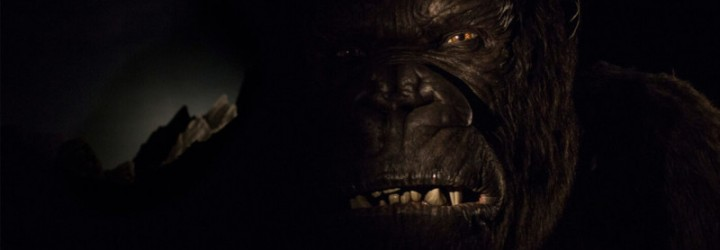 Watch a Full Ride POV of Reign of Kong!