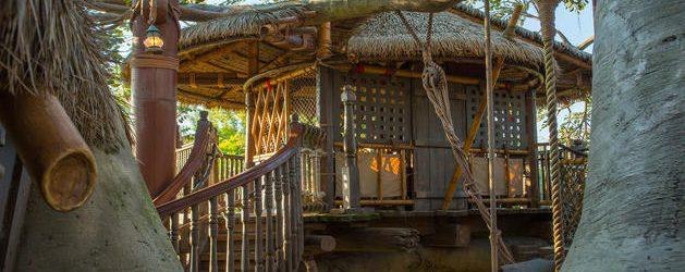 Swiss Family Robinson Treehouse Extends Refurbishment