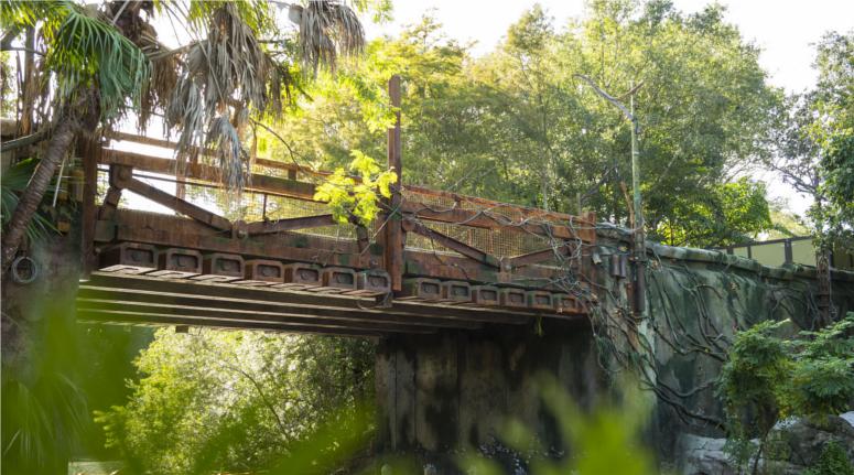 bridge entrance to Pandora - The World of Avatar