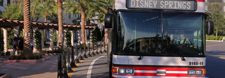 Bus Wait Times Now Available via the My Disney Experience App!
