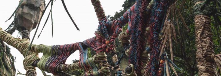 Watch Dedication Ceremony to Pandora – The World of Avatar