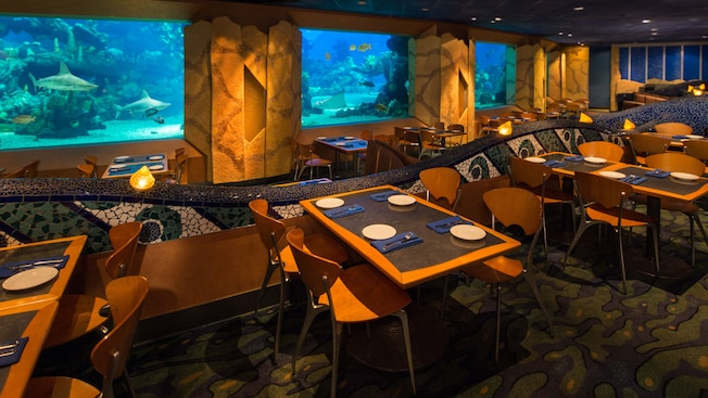 Coral Reef Restaurant Closing for Short Refurb in August