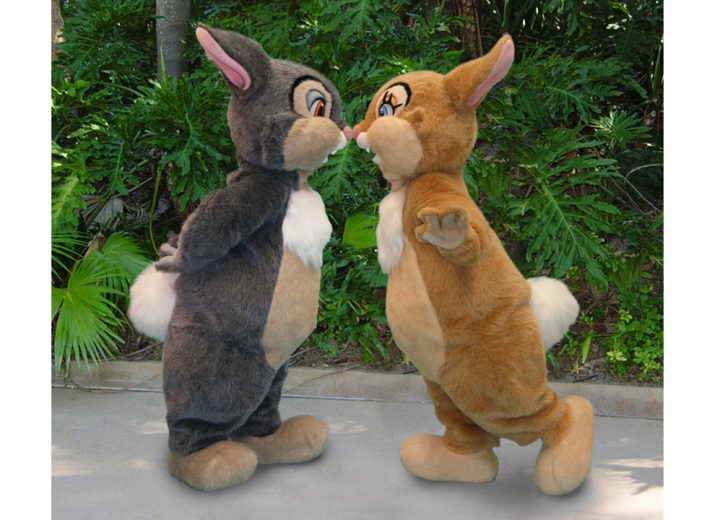 Meet Thumper and Miss Bunny for Limited Time at Disney's Animal Kingdom!