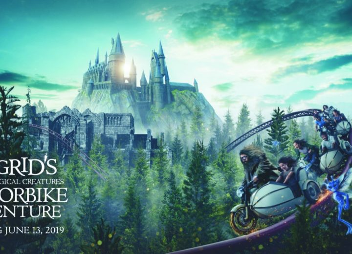 Brand New Details for Hagrid's Coaster Revealed for Universal Orlando!