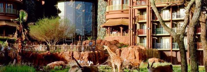 Poor Reviews of the Animal Kingdom Lodge