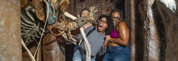Get a Sneak Peek Inside the Houses at HHN29!