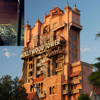 What Fox IPs would we like to see in Disney's Theme Parks?